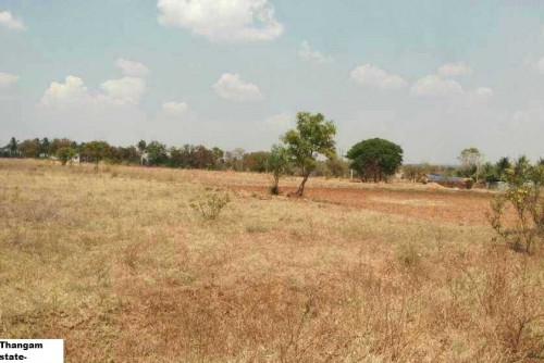 143748 Acre Agricultural Plot for Sale In Pogalur, Annur, Coimbatore For Rs 1.65 Crore | Property Image 5 Large