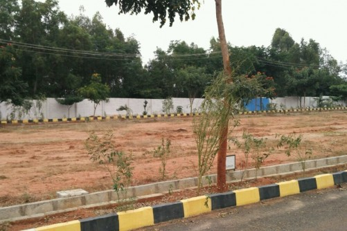 1200 Sq Ft Residential Plot for Sale In Praja Flamingo Land Scape, Sadahalli Gate Nh 7, Bangalore For Rs 30 Lakh | Property Image 5 Small