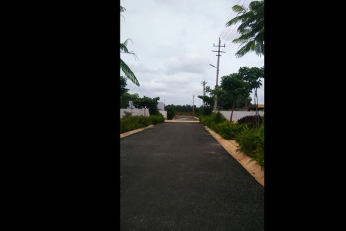 1350 Sq Ft Residential Plot for Sale In Praja Karna Divine, Devanahalli, Bangalore For Rs 25.65 Lakh | Property Image 1 Large